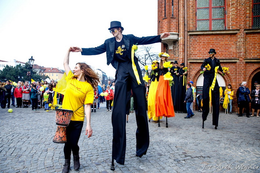 Wolontariusze w żółtych koszulkach opanują ulice Pomorza. 22 kwietnia zakwitną Pola Nadziei