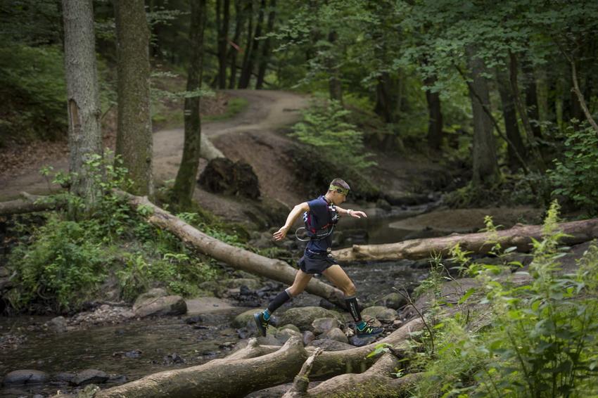 Górski ultramaraton nad morzem? Z Gdańska do Wejherowa przez Trójmiejski Park Krajobrazowy