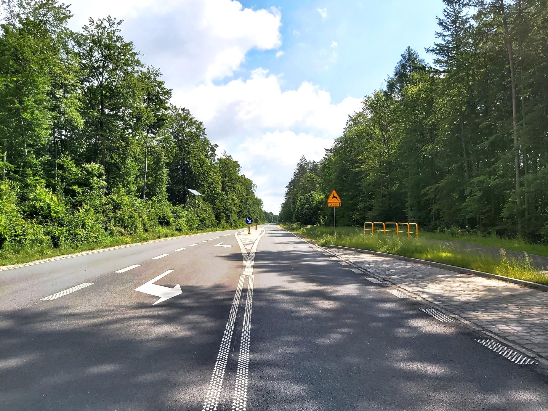 Nie tylko kierowcy będą zadowoleni. Modernizacja drogi wojewódzkiej 521 z Kwidzyna do Prabut ukończona