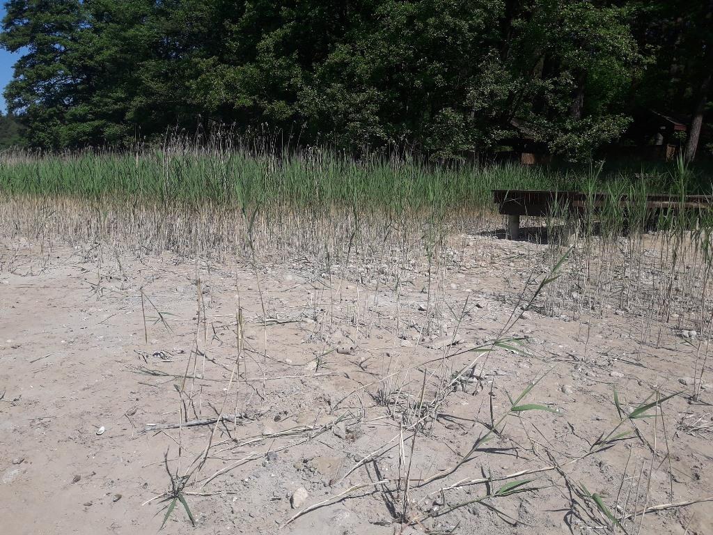 Jest postępowanie administracyjne w sprawie katastrofy ekologicznej w Dolinie Słupi