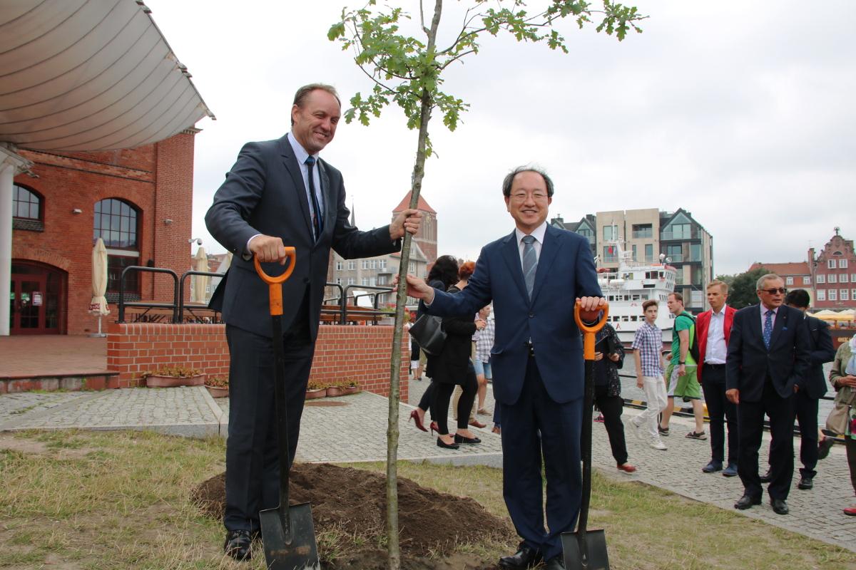 Drzewo Przyjaźni na 20-lecie kontaktów Pomorza z Koreą Południową. Samorządowcy obu krajów wspólnie posadzili dąb