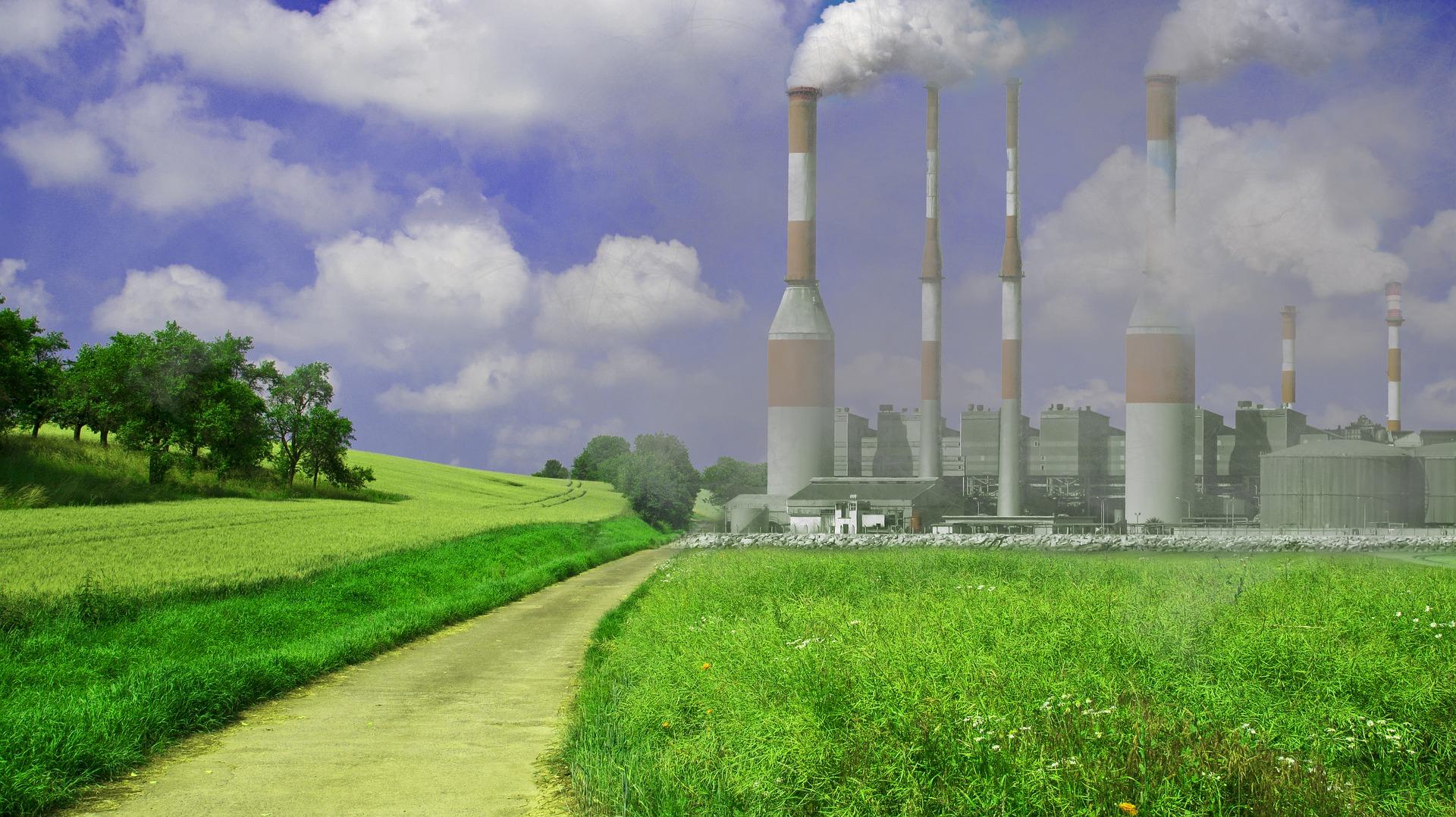 Światowy Dzień Ochrony Środowiska. Ile śmieci produkuje mieszkaniec Pomorza? Co jeszcze liczby mówią o ekologii? [INFOGRAFIKA]