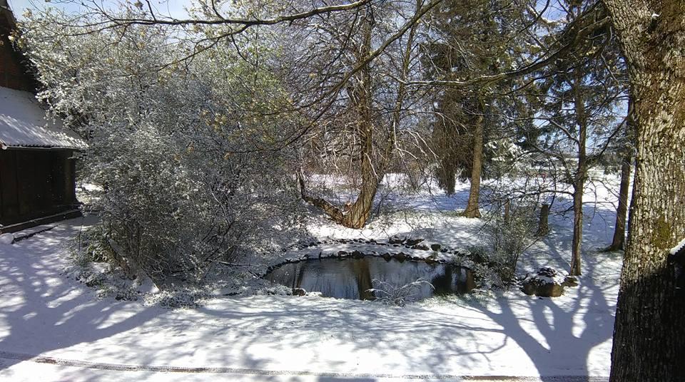 Śnieg w maju to nie anomalia. Zimni Ogrodnicy w obiektywach mieszkańców Pomorza [ZDJĘCIA]