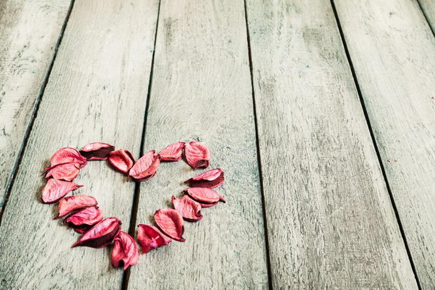Kto wie więcej o miłości – laboranci czy poeci? Wykład dr hab. Janusza Leona Wiśniewskiego