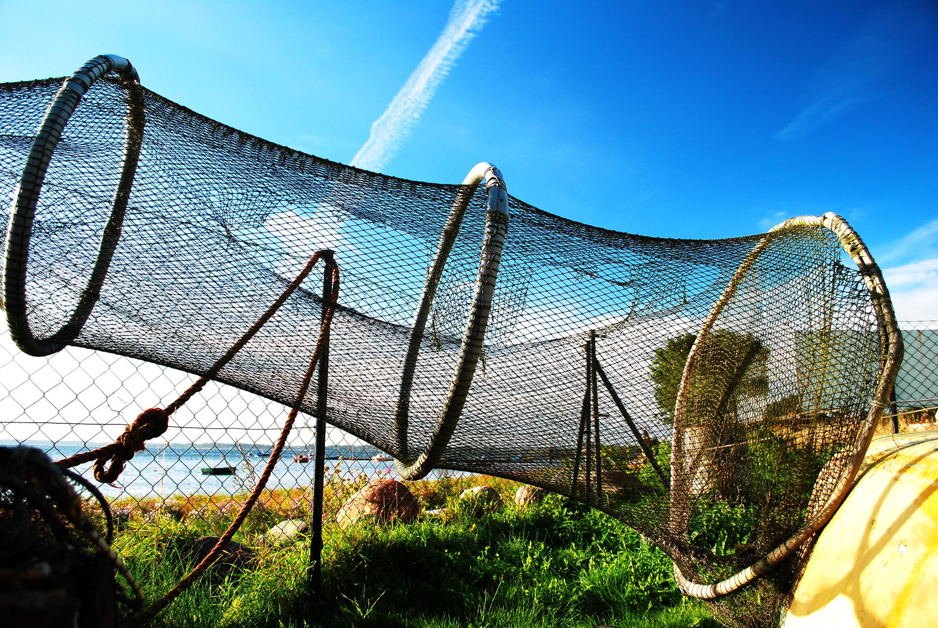 Zwalczanie nadużyć finansowych w ramach Programu Operacyjnego Rybactwo i Morze 2014-2020