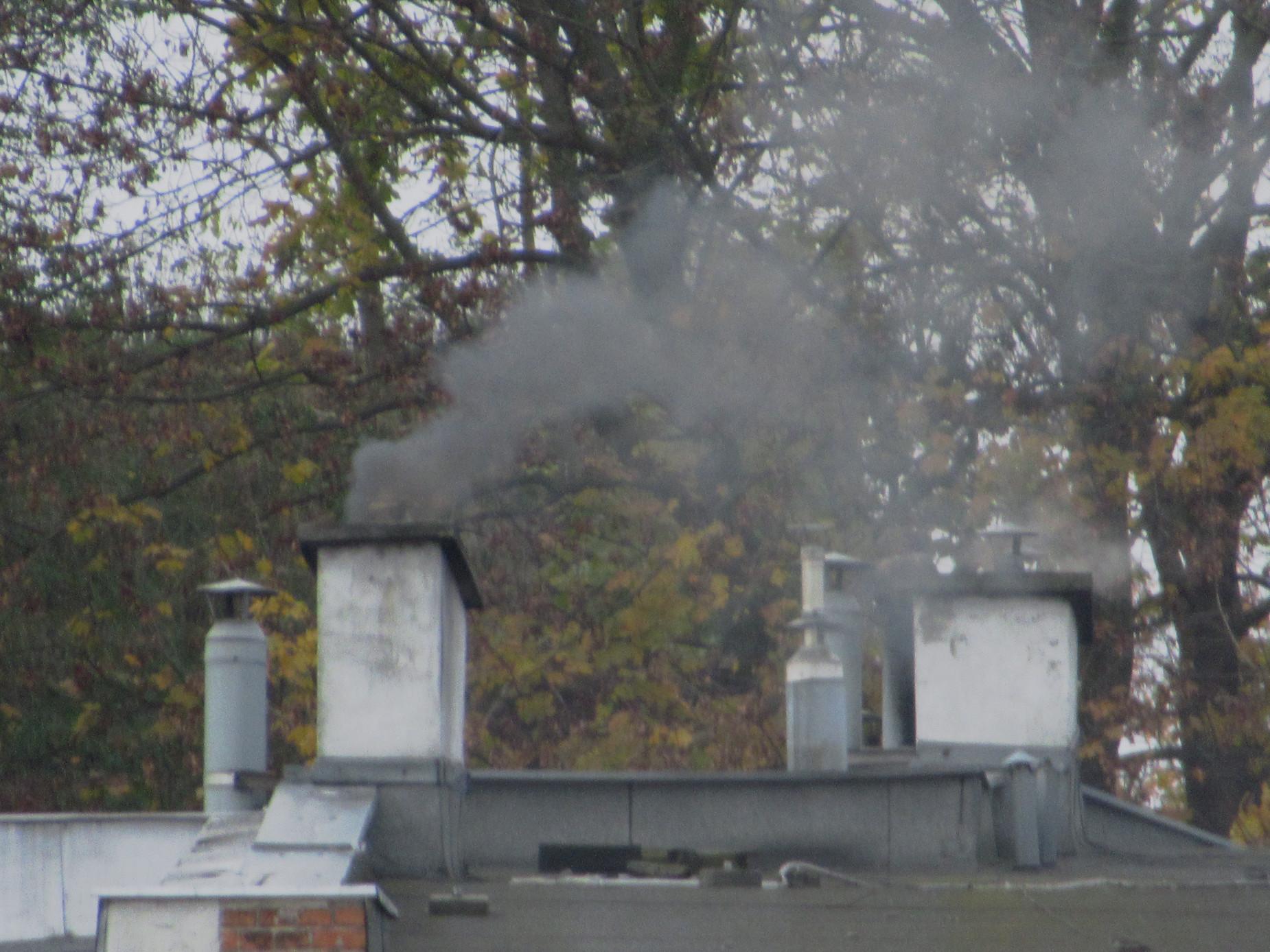 Zależy Ci na czystym powietrzu w twojej miejscowości? Weź udział w konsultacjach uchwał antysmogowych