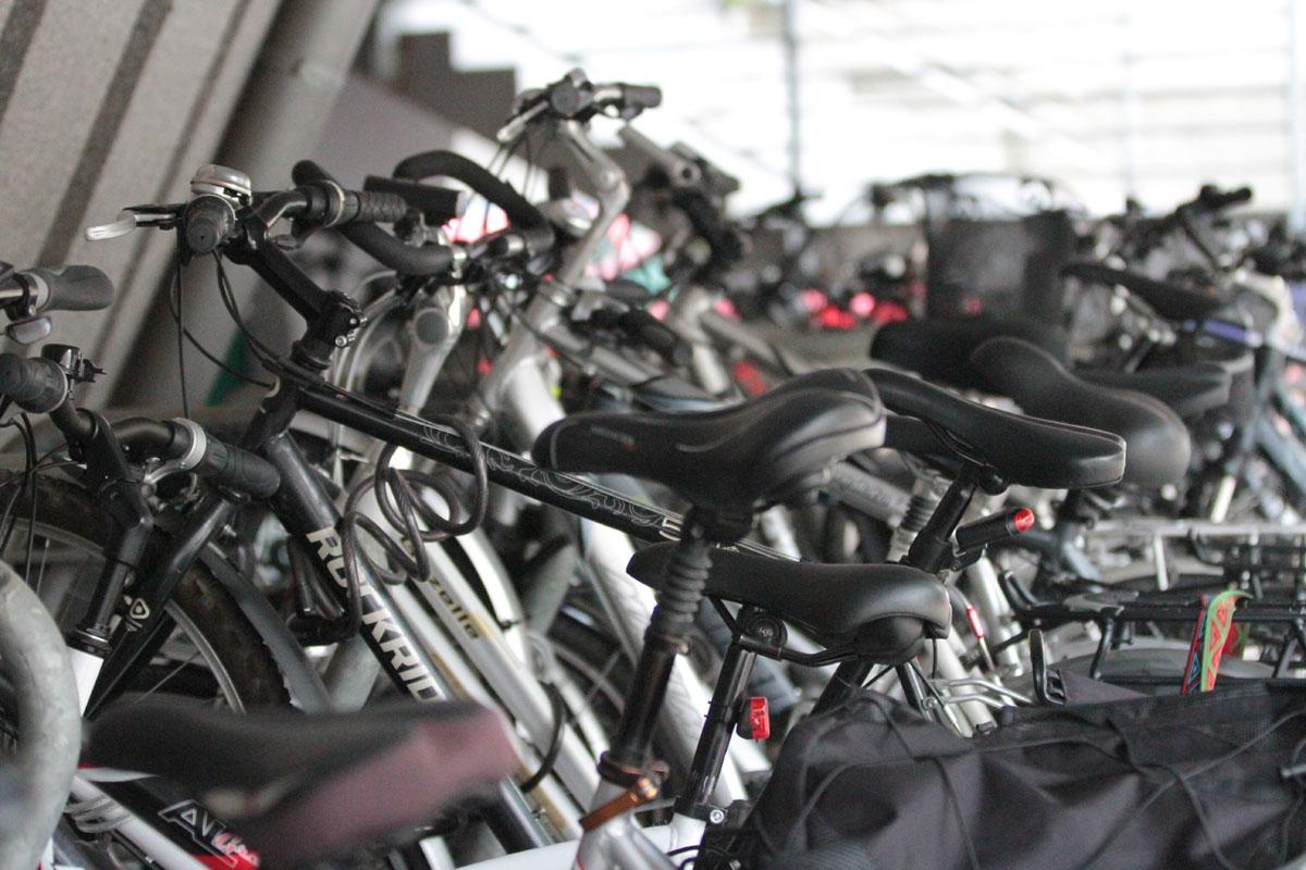 Jaka powinna być idealna droga dla rowerzystów? Weź udział w specjalnych konsultacjach