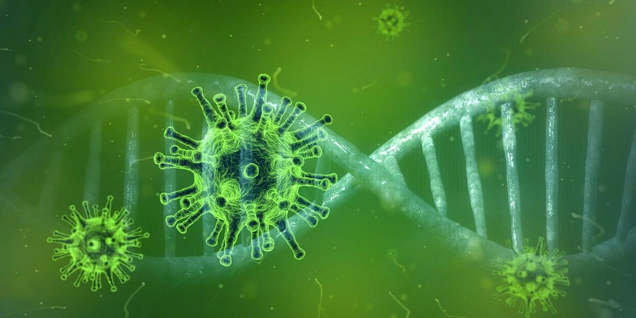 Pierwszy potwierdzony przypadek koronawirusa. Pacjent przebywa w szpitalu w Zielonej Górze. Czy Pomorze jest bezpieczne?