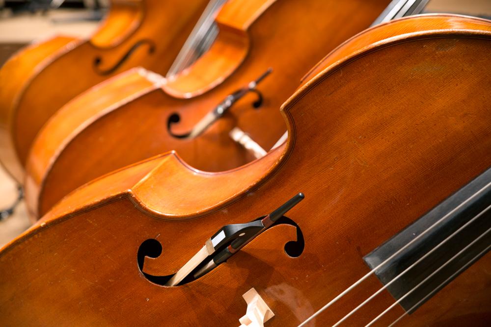 Poznajmy gdańskich i sopockich filharmoników