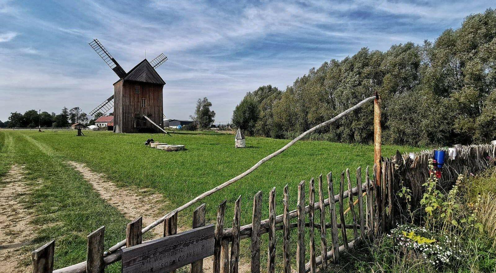 Wiatrak w Mokrym Dworze w gminie Pruszcz Gdański