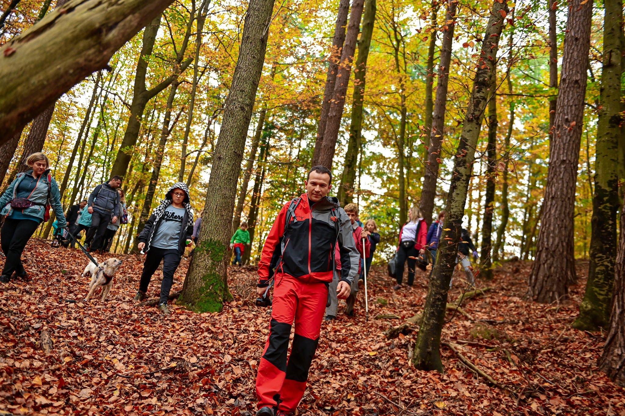 Ludzie na spacerze w lesie