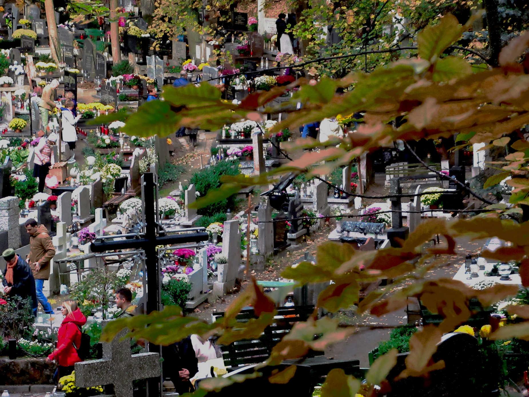 Jak dojechać na cmentarze w czasie pandemii? Zmiany w komunikacji