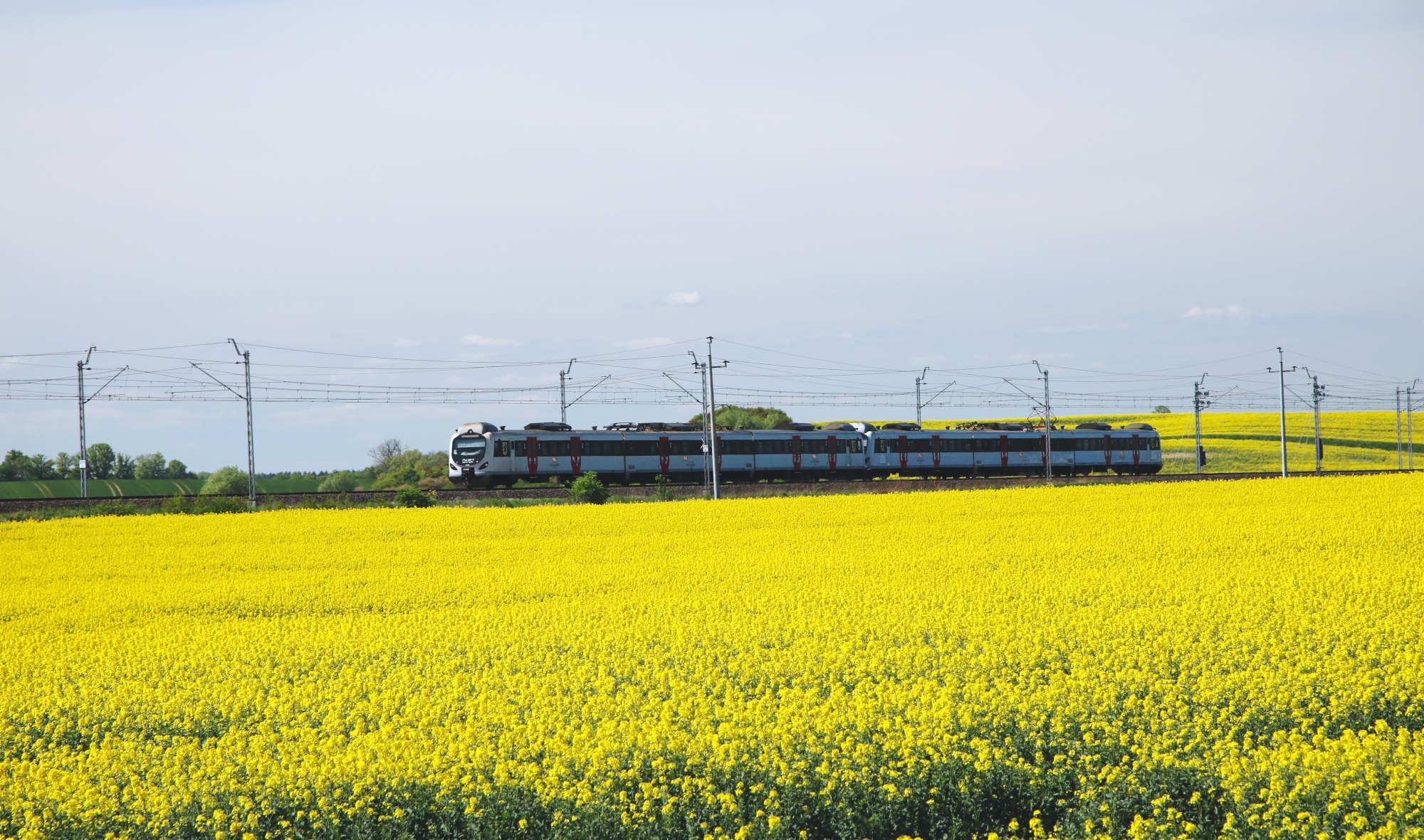 Poznajcie Pomorze z okien pociągu. W Dzień Dziecka młodzi pasażerowie jeżdżą za darmo